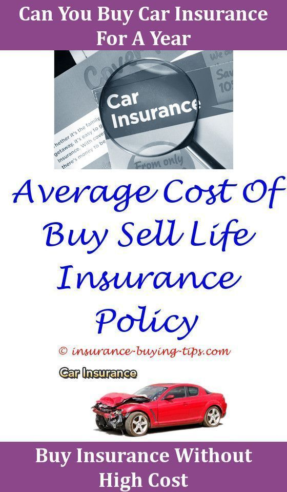 Top Tips For Buying Life Insurance Online Online Insurance