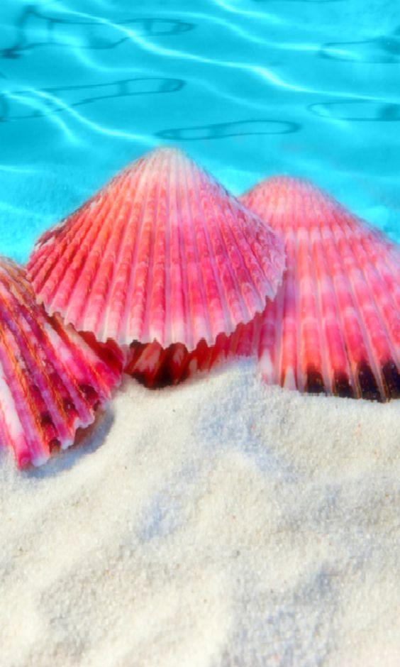 Los colores de playa