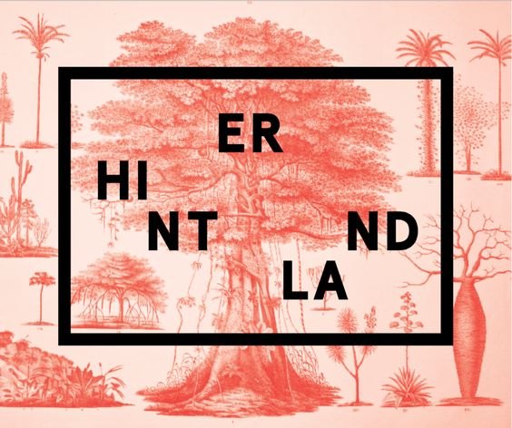 Hinterland #santamonica