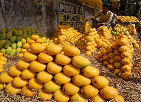 mmm: Pakistani Mangoes, Fresh Mangoes, Pakistan 4U, Mangoes Grow, My Pakistan, Best Fruit Farm, Pakistan News Today, Fruits Veegies