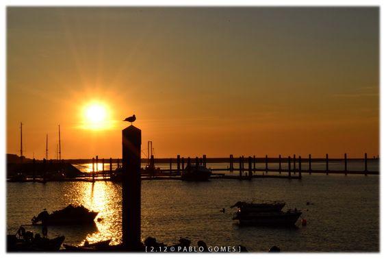 Afurada [2012 - Gaia - Portugal] #fotografia #fotografias #photography #foto #fotos #photo #photos #local #locais #locals #cidade #cidades #ciudad #ciudades #city #cities #europa #europe #porto #oporto #turismo #tourism #metro #turismo #tourism #porto #oporto #douro #duero #rio #rios #river #rivers #barco #barcos #boat #boats #paisagem #paisaje # landscape @Visit Portugal @ePortugal @WeBook Porto @OPORTO COOL @Oporto Lobers