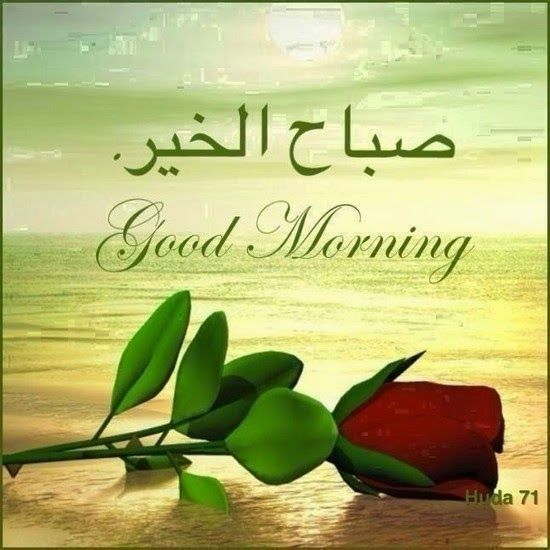 نتيجة بحث الصور عن صباح الخير بالتركي Good Morning Wishes Gif Beautiful Morning Messages Good Morning Greetings