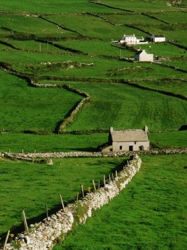 Happy irish and my heart on pinterest for Country garden designs ireland
