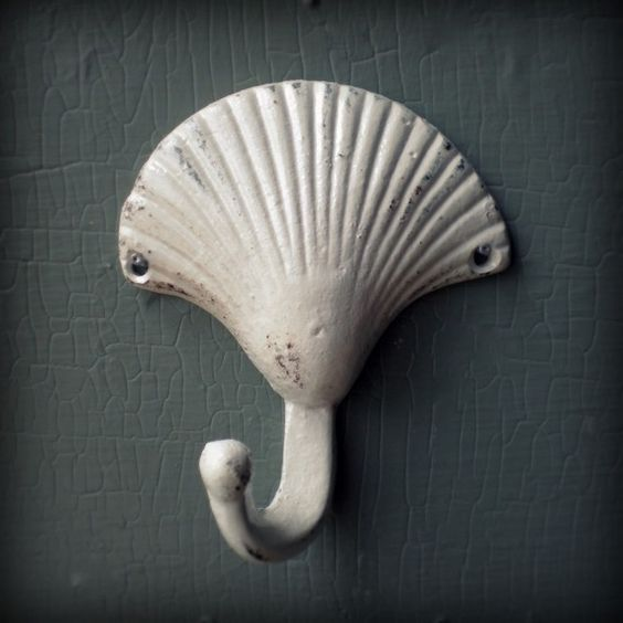sea shell hanger