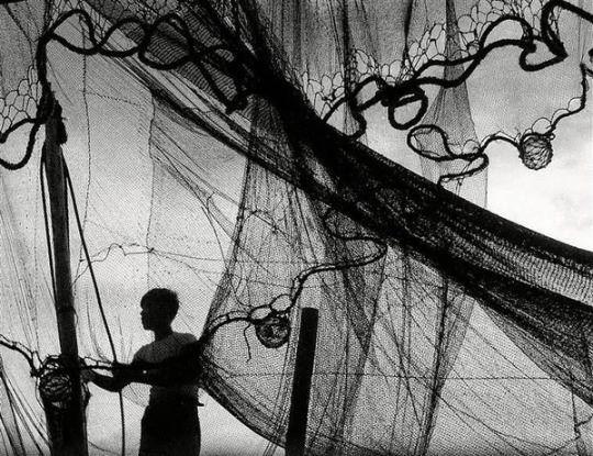 Fosco Maraini, 1953