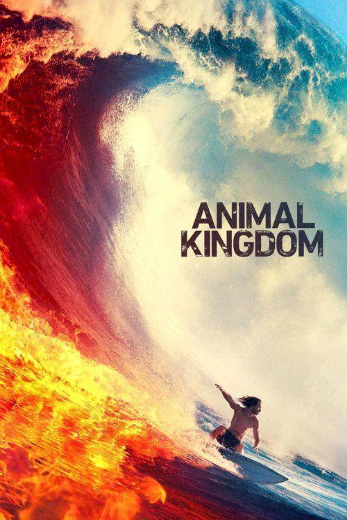 Animal Kingdom 123movies 123movies Tv Series Putlocker In 2020 This Is Us Movie Animal Kingdom Kingdom Movie