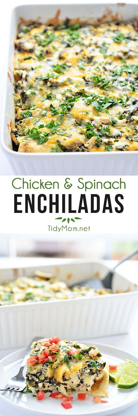 Chicken and Spinach Enchiladas are a family favorite!  recipe at TidyMom.net
