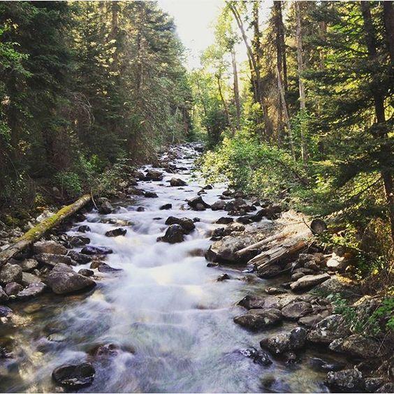 Big Creek Trail | Bitterroot #nationalforest #MT #Montana #water #nature