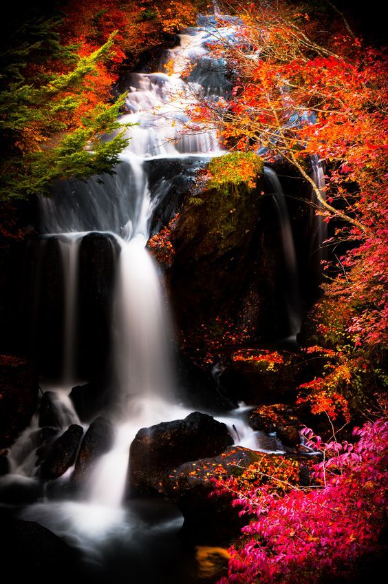 Waterfall, autumn, Japan #Japan #nature #waterfalls #paradise #waterfall #Orange