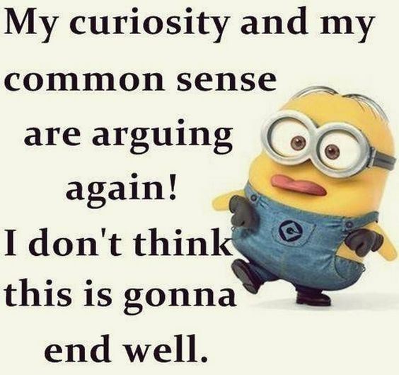 My Curiosity And My Common Sense Are Arguing Again Funny Fun Jokes Funny Quotes Common Sense Minion Minion Quote Minions Funny Funny Minion Quotes Funny Quotes
