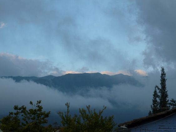 mountain covered in fog and glaze in the early morning in Cayambe