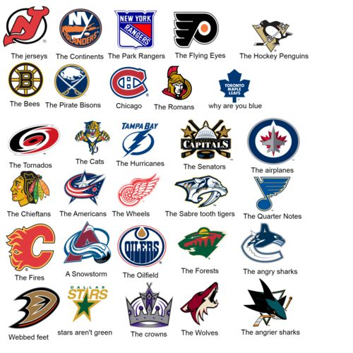 We can make any style jacket with your favorite NHL team ...
