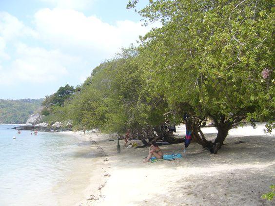 #thailand #kohtao #beach #sea #water #snorkeling #summer #holidays