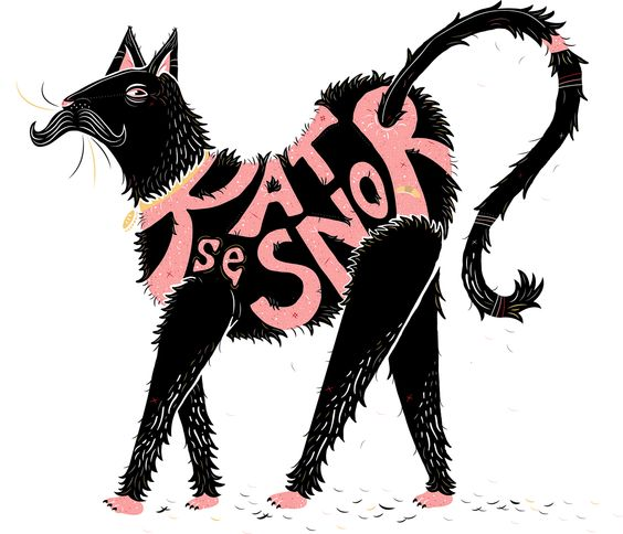 Illustration of the Afrikaans saying: 'Kat se Snor'