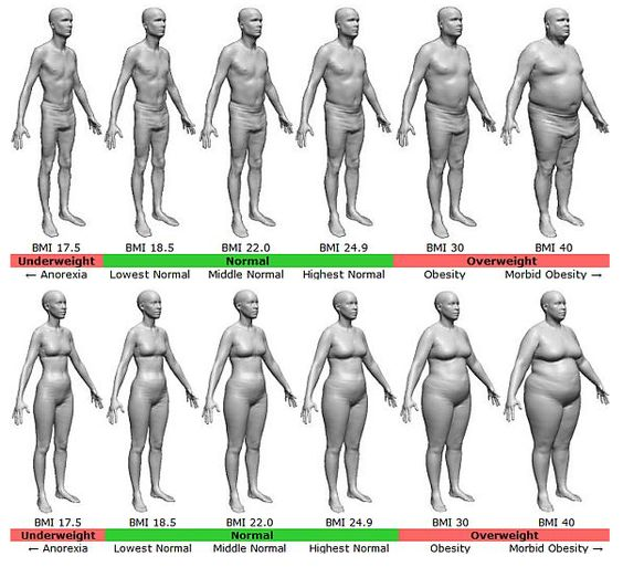 What Types of Fat Are in Food?