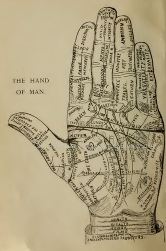 Palmistry Palm Reading Lines Of The Hand Symbols Cheiromancy