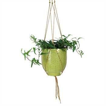COYNES - Knit Hanging Pot, Large - Lime