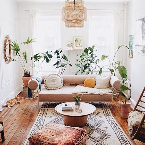 Plants And Warm Colors Ineedmoreclothes Com Homedecor Homeinspo