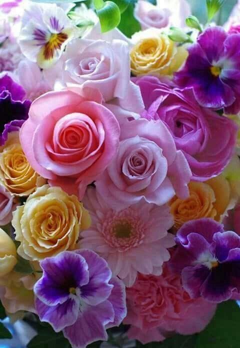 Natural Flowers Flores Naturales Flores Bonitas Flores