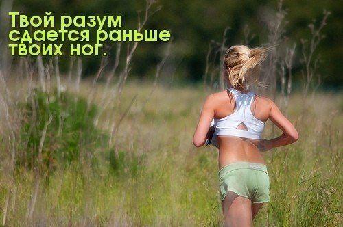 Подписывайся на страничку https://plus.google.com/105901978456480766638/posts и узнаешь еще больше   #sport #спорт #диета #упражнения #похудение #мотивация