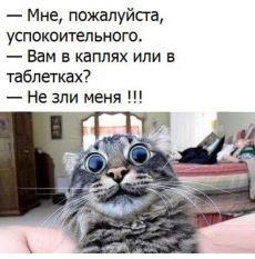Тихо ша,Одесса. | Юмор | Постила