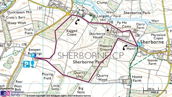 Map route for family fun walk at Sherborne Park Estate