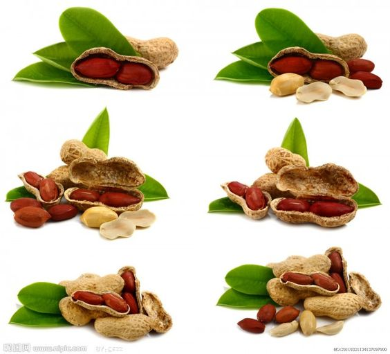 For People With Peanut Allergy: It Is High Time To Avoid Peanut Food - All Fresh Recipes