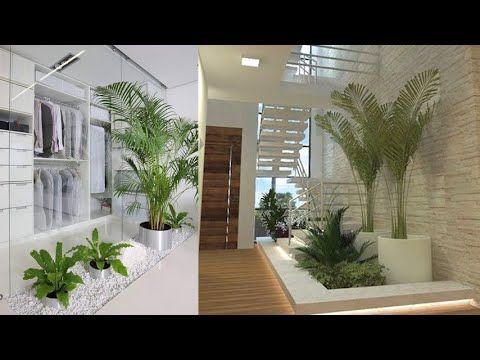 Youtube Indoor Garden Apartment Indoor Plants Easy House Plants
