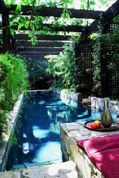 Interesting pool... but I can't say that I like it. Can you imagine the mosquitoes?! :/