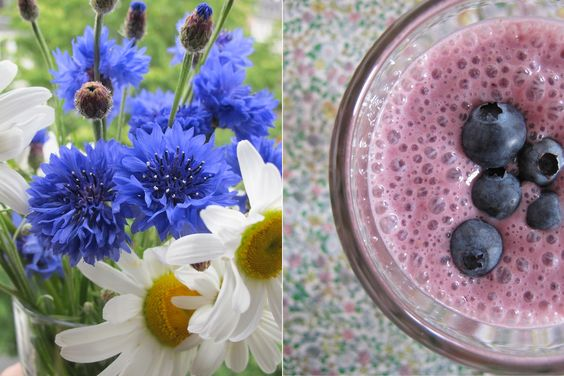 Postcards from Italy: Amaretti-Blaubeer-Smoothie und Margeriten mit Kornblumen | the ribbon dog