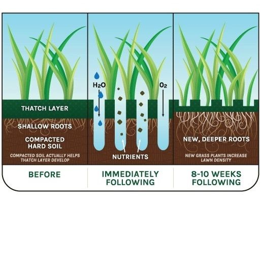 What is Lawn Aeration? How often should my lawn be aerated? Aerating your lawn…