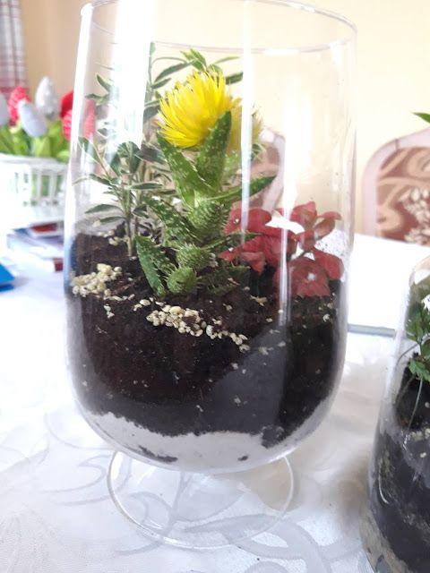 Ogrodek W Szkle 2 Culinary Arts Decor Plants