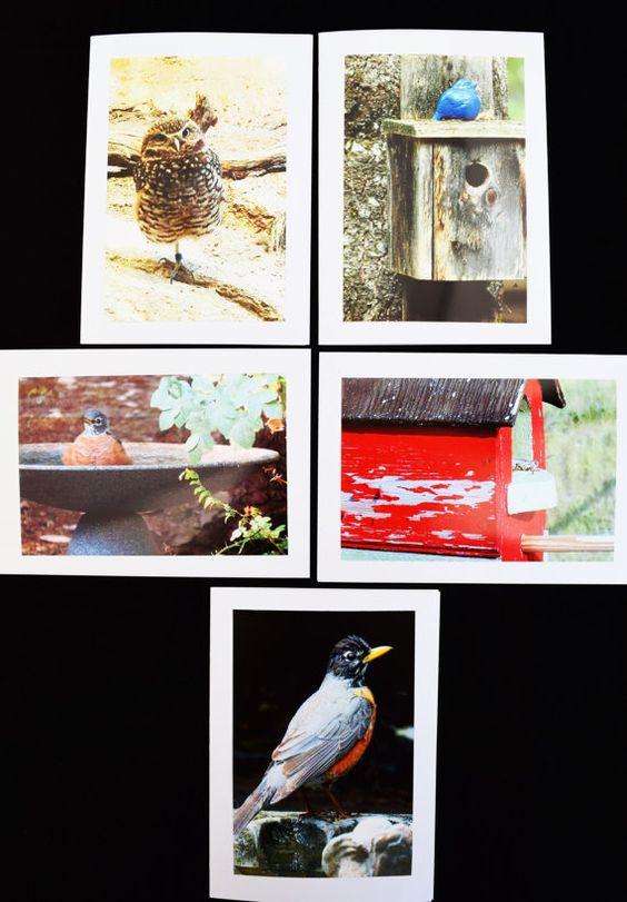 Birds Photo Cards Set of 20 Birdhouses Bird by MitchiesGalleria
