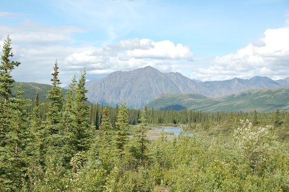 Alaska Road trip likely heading to Seward
