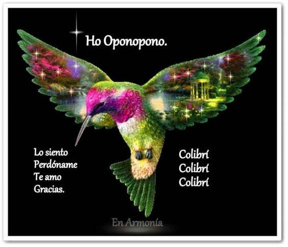 Colibri. Colibri. Colibrí