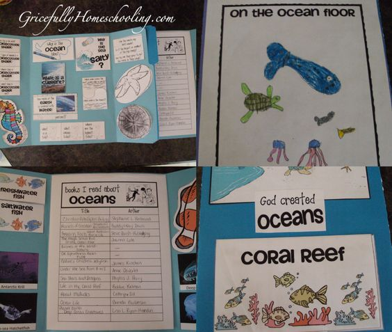 Oceans Unit Study with lapbook