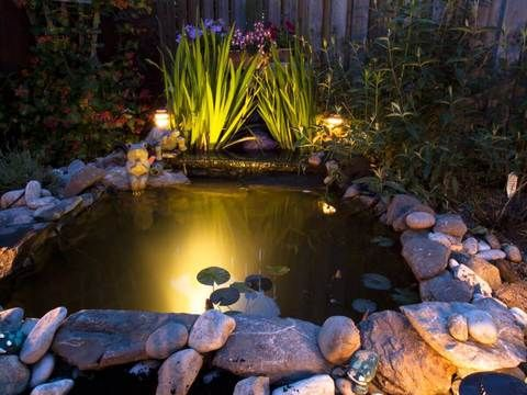 Pond Lighting Light And Water A