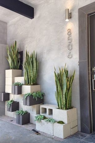 Eclectic Front Door with Cinderblock wall, House Numbers Avalon - Modern #5 House Number in Brushed Nickel, Raised beds