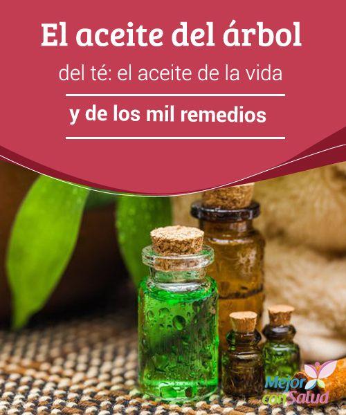 El aceite del árbol del té: el aceite de la vida y de los mil remedios  El aceite del árbol del té se ha utilizado desde la antigüedad para tratar problemas de la piel. Sin embargo, sus aplicaciones medicinales van mucho más allá.