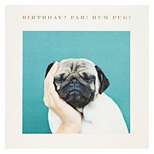 Buy Susan O'Hanlon Pug In Hand Birthday Card Online at johnlewis.com