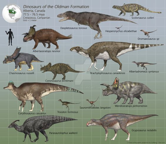 Dinosaurs of the Oldman Formation by PaleoGuy on DeviantArt:
