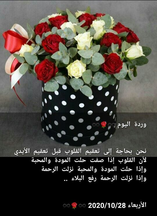 Pin By صل على النبي On وردة اليوم Flowers Bouquet Beautiful Morning Decorative Jars