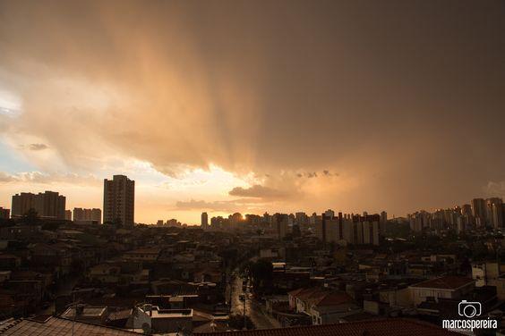 Jardim Saúde, São Paulo/SP.