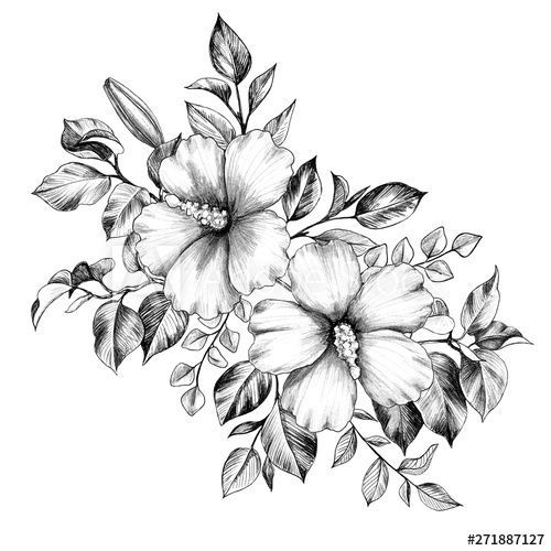 Hibiscus Dessin Flowers In 2020 Bunch Of Flowers Drawing Hibiscus Flower Tattoos Hibiscus Drawing