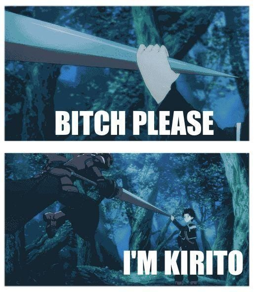 Bitch please, I'm Kirito XD
