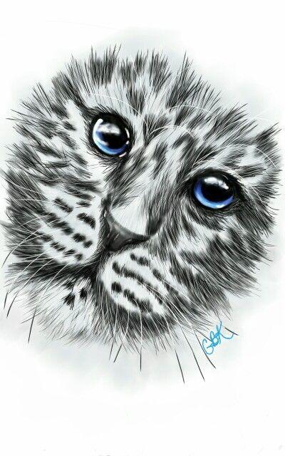 Drawn on tablet