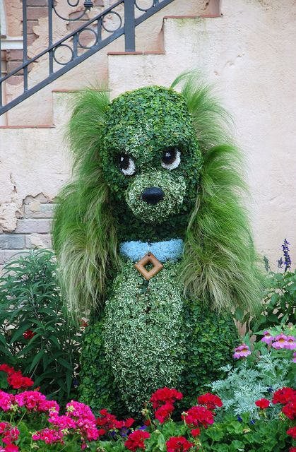 Festive Look Topiaries You look so good with Mexican feather grass for long fur! Epcot Flower Festival  Epcot, via Flickr.