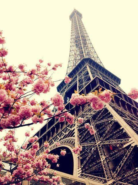 Torre Eiffel com flores rosas