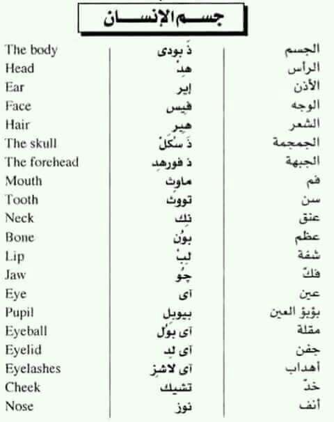 Learning Arabic Msa Fabiennem English Vocabulary Words English Phrases English Words