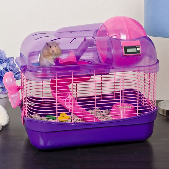Ware Spin City Health Club Hamster Cage | Fun gadgets ...  Ware Spin City ...